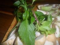 Thai - Basil- horapa