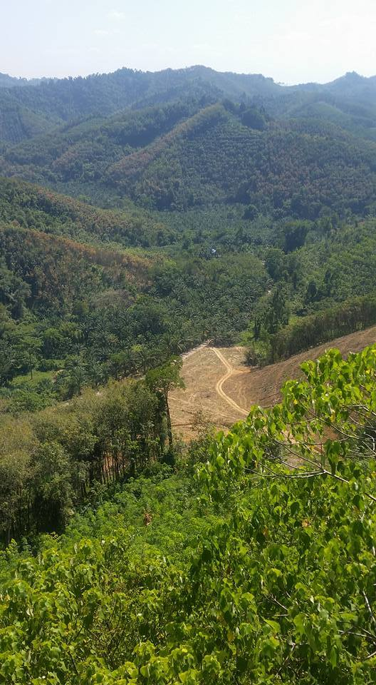 view from Wat bang Riang Phrang Nga