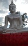 Buddha on red lotus lake