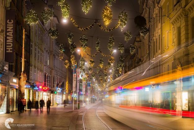 christmas-lights-erika