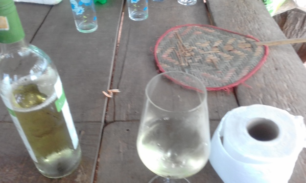 on-the-farm-with-my-wine-glass