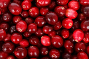 cranberries_background_200742