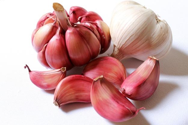 garlic-618400_1920