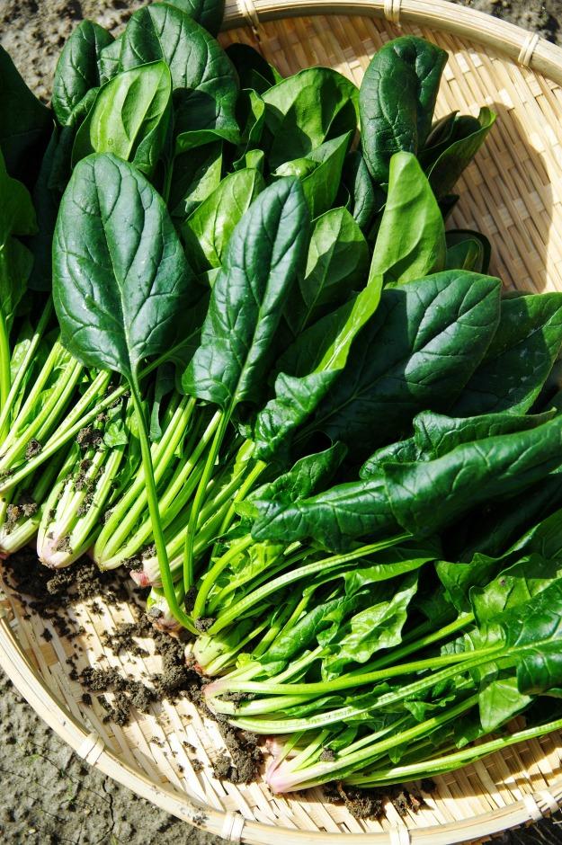 vegetables-1125420_1920