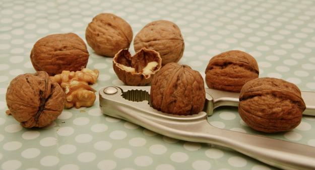 walnuts-1891141_1920