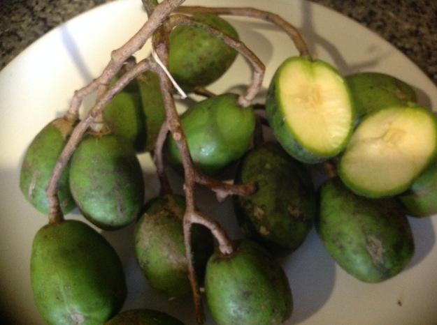 Thai Olives