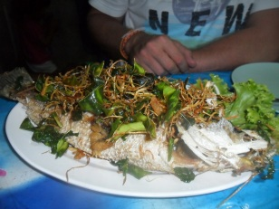 Beautiful Picture of Steamed Fish 25 rest I think