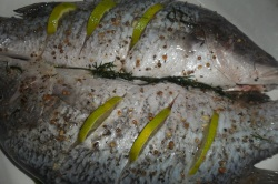 Fish with Lime and fennel