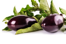 It's OK not to like eggplant