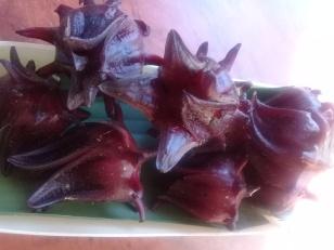 Rosella fruit-