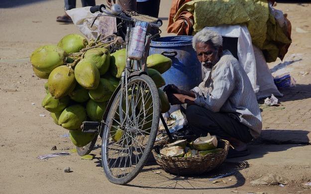 coconut-2327075_1920