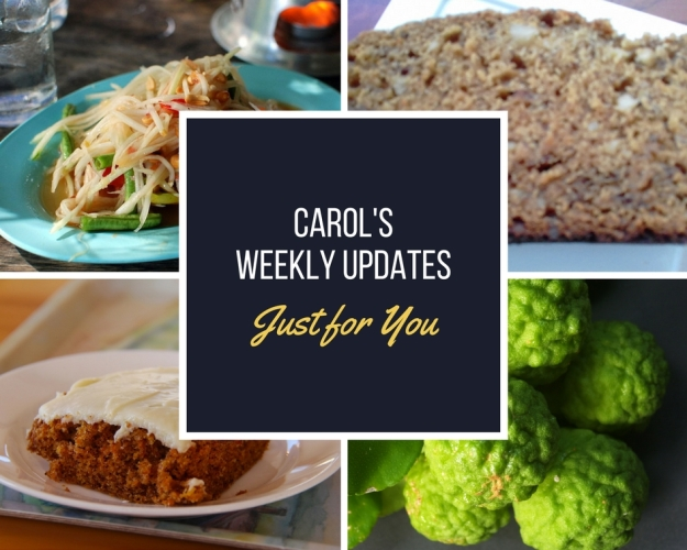 Weekly update collage