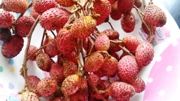 korlan fruit on bunch
