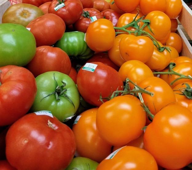 heirloom tomato-2375152_640