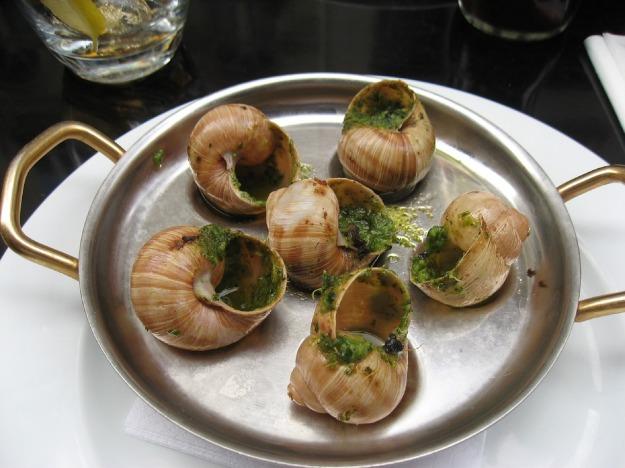 escargot-snails-france-
