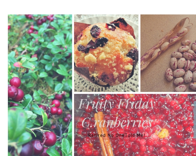 Fruity Friday, The Cranberry