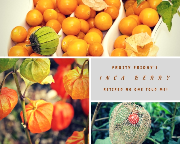 Fruity Friday's The Inca Berry (1)