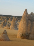the-pinnacles-cervates-WA