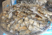 small-dried-fish-local-thai-market