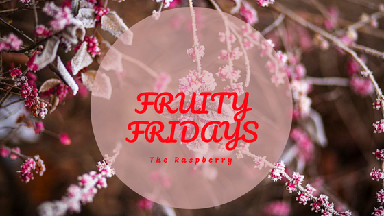 Fruity Fridays The Raspberry