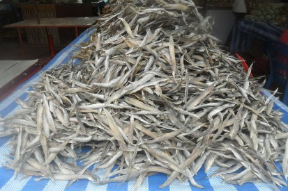 silver-dries-fish-Thai-Market