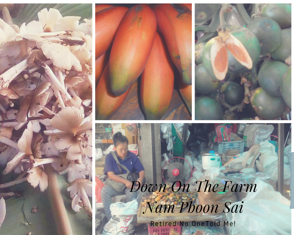 Down on the Farm Nam Pboon Sai