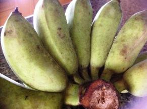 Small cooking bananas