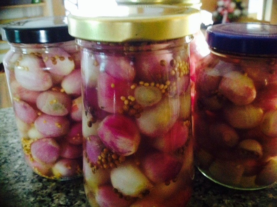 Home made pickled onions