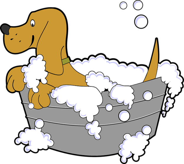 bath time animal-1298962_640