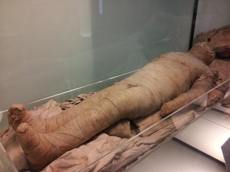 egyptian-museum-630297_640