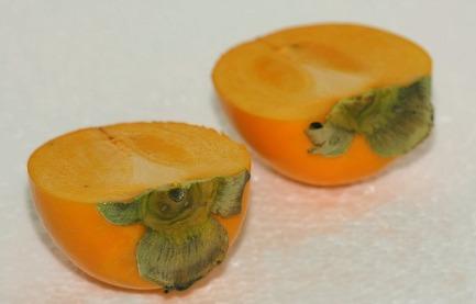 persimmon