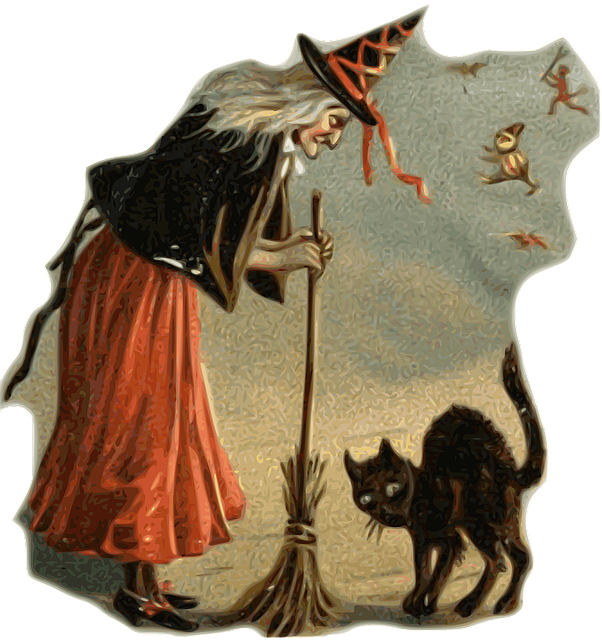 witch and black cat-1461961_640