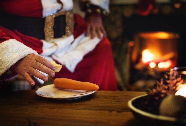 adult-carrot-celebration-721167 (1)