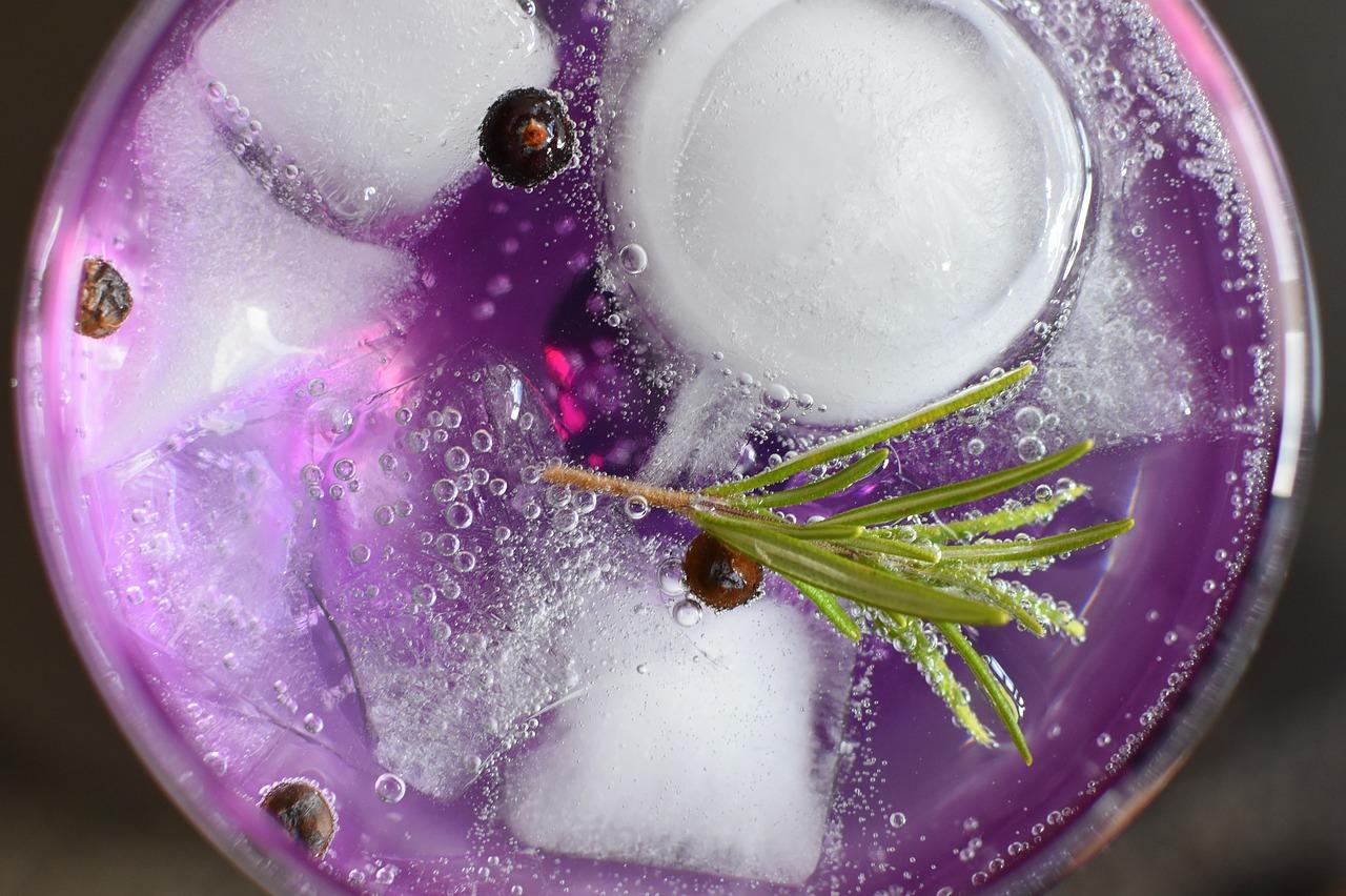 gin tonic juniper berries