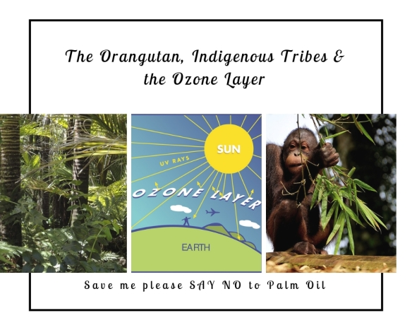 Palm Oil…Part Two…Indigenous Tribes, Orangutans and the Ozone Layer