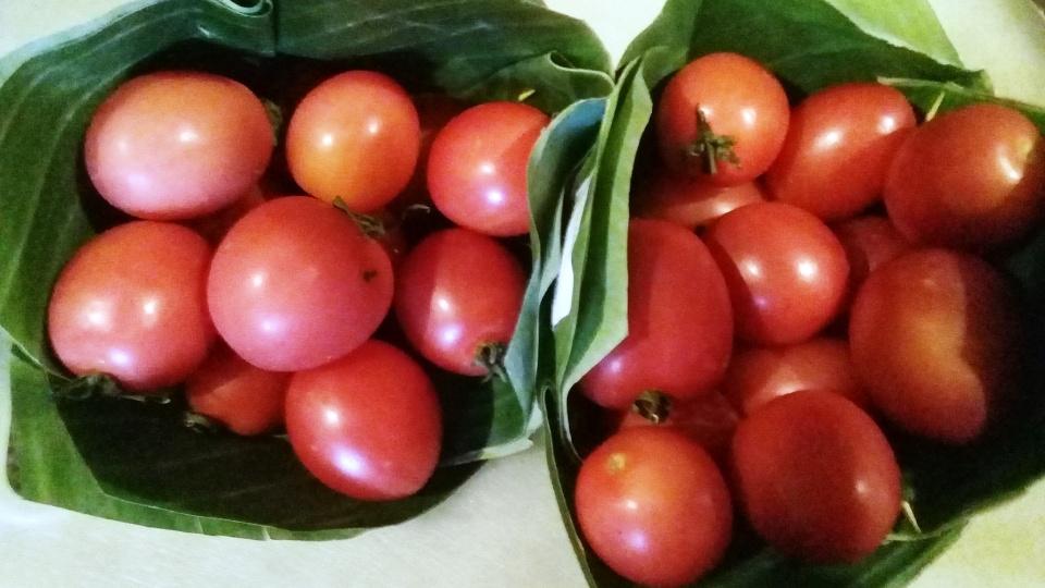 tomatoes banana leaves