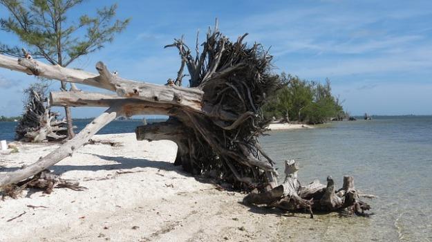 beach desert island