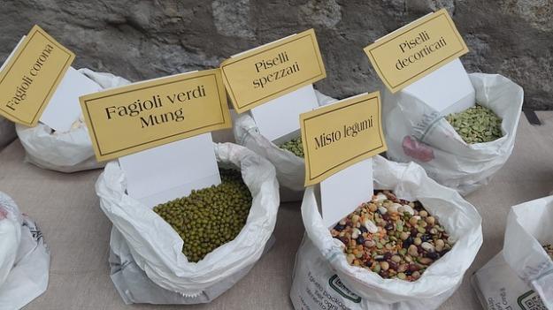 lentil mung beans legumi
