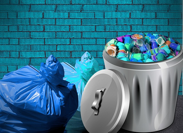 Waste bin and bags