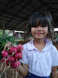 girl holding bunch of radishes