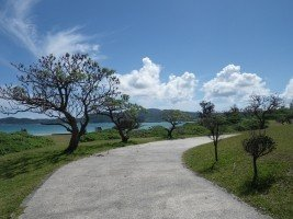 okinawa-sea-summer-trail-sunny-day-public-holiday