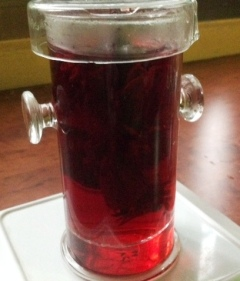 Rosella tea brewing