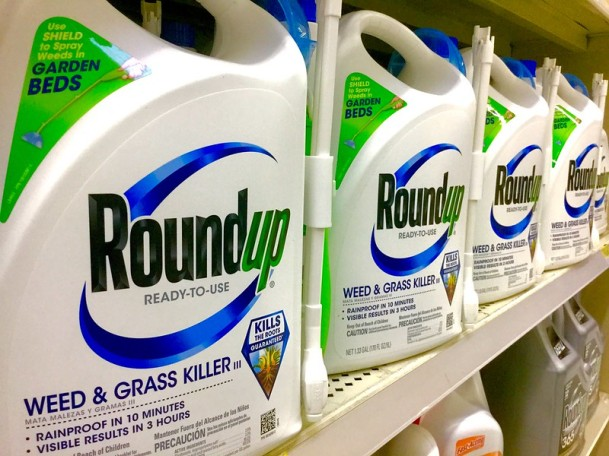 roundup weedkiller on shelves