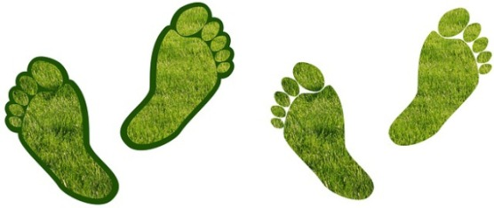 green foot prints eco system