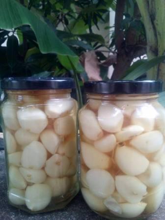 two jars of pickled garlic