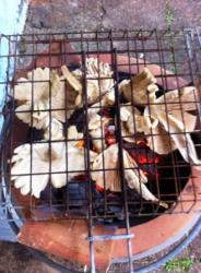 MUSHROOMS ON BBQ