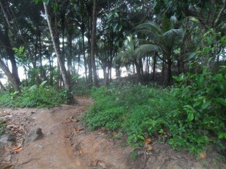 Track to banana beach (2)