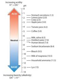 Acid Alkali scale-01