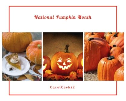 National pumpkin moth banner