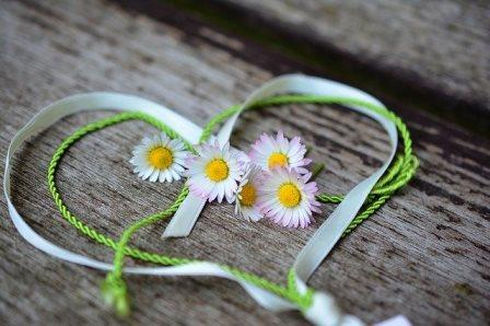 daisy heart ribbons-3392654_640